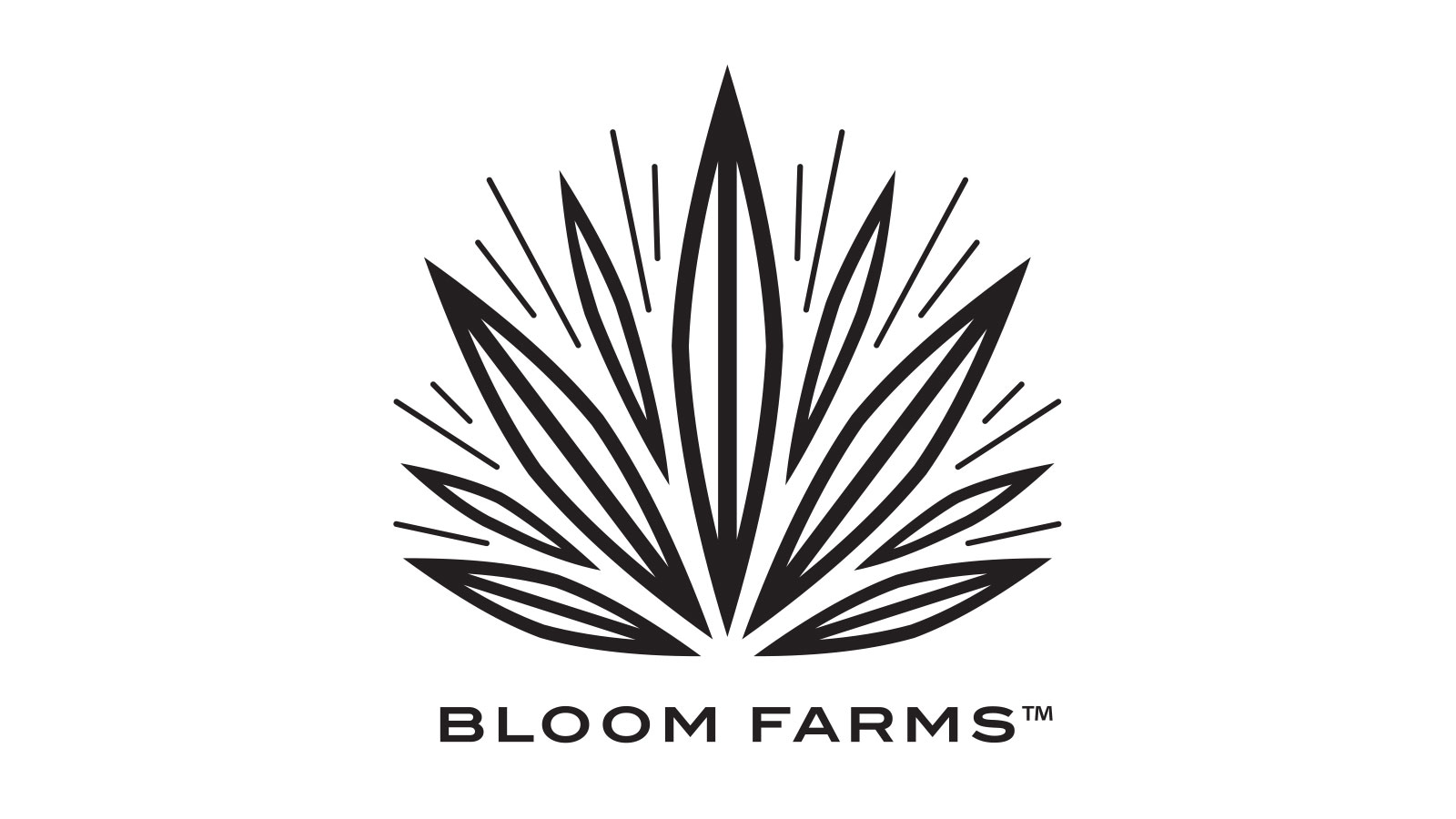 Find Us - BLOOM FARMS | A One for One Cannabis Company
