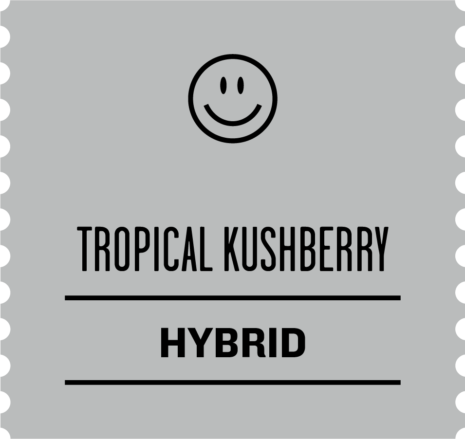 Tropical Kushberry